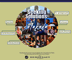 Seeking Solutions: Website by Skoubo Graphics