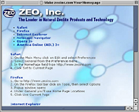 Make zeoinc.com your homepage, Skoubo Graphics Website Design